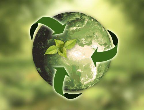 Ползи от рециклирането