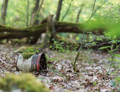 Премахване на отпадъците от горите и крайградските зони